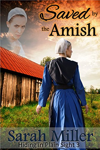 Amish Romance: Saved by the Amish