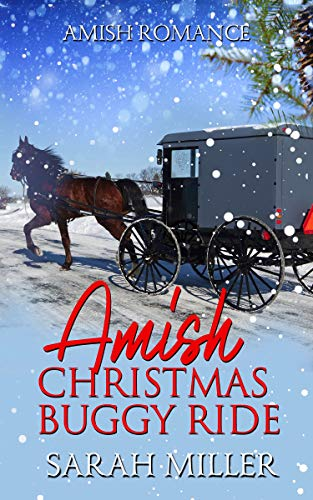 Amish Christmas Buggy Ride